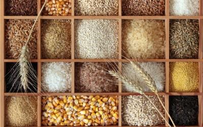Cereali e Cereali integrali: qual'è la differenza?