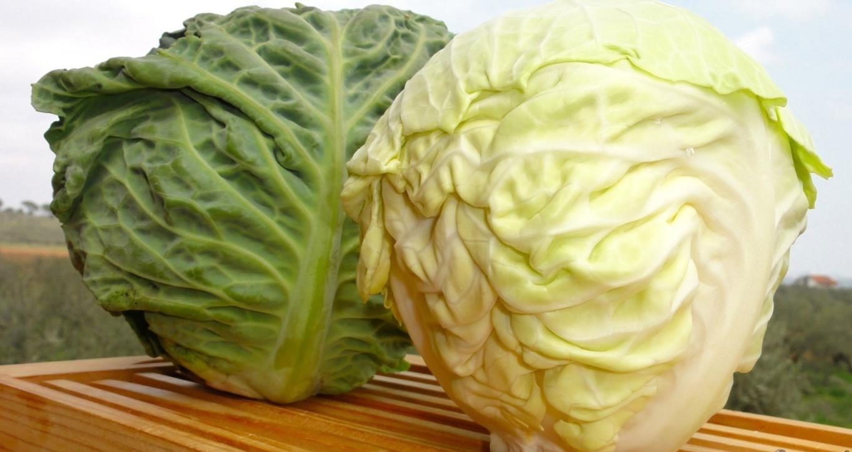 Cavolo-e-broccoli-ricchi-di-proprietà