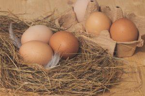 Le-uova-umili-ma-nobili