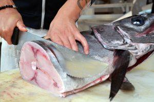 pesce-alimento-prezioso