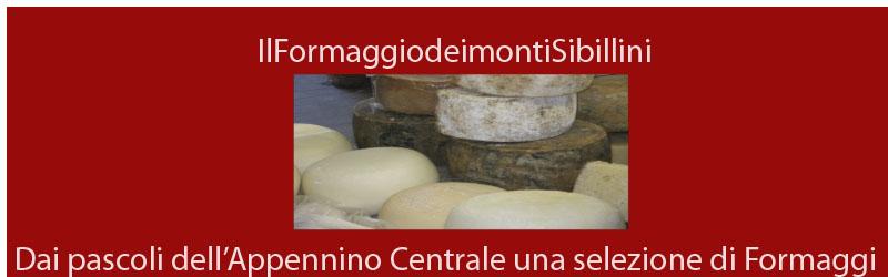 Pecorino: fresco o stagionato il formaggio dei Sibillini…
