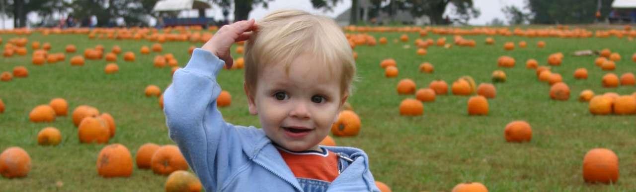 Quanto deve mangiare un bimbo dai 2 ai 3 anni