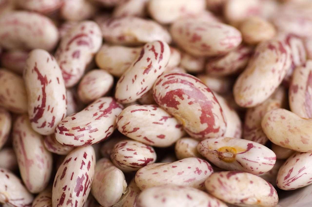 Sai quante varietà di fagioli esistono? Ecco i  Fagioli Borlotti