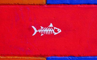 Antibiotici anche nel pesce